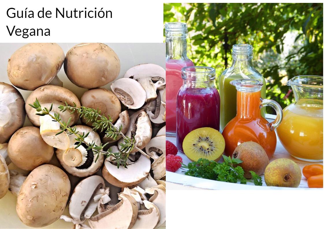 Guía de Nutrición